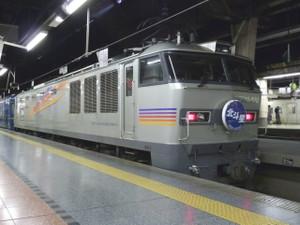 P1000010s