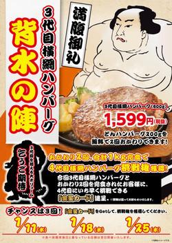 Yokozuna_161229